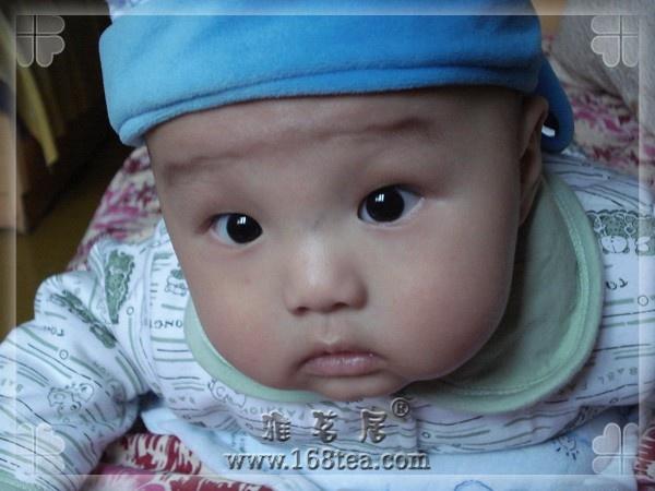 年龄最小的雅茗居茶友向大家问好
