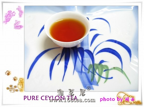 PURE CEYLON TEA――珍惜每一份茶缘