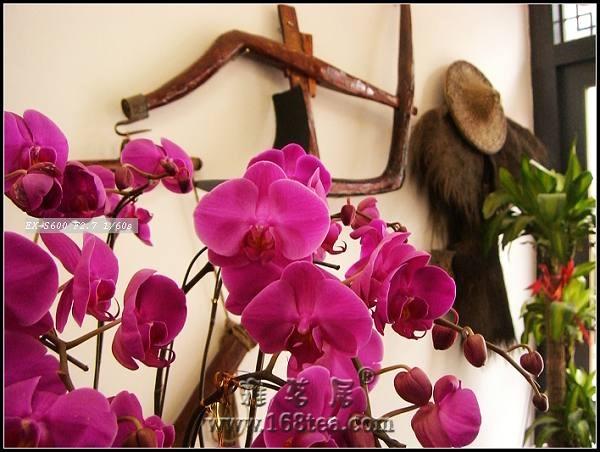 2008年1月18日福州汉唐文化城开张