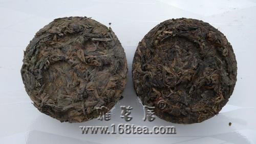 茶叶加工中微生物的研究进展