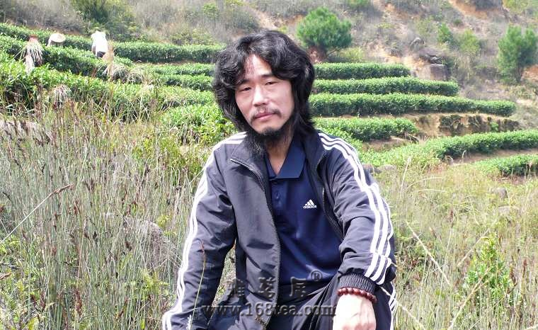2008年安溪收茶图片记录