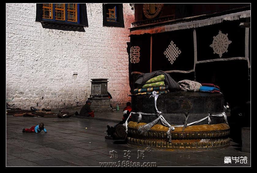 西藏的未来