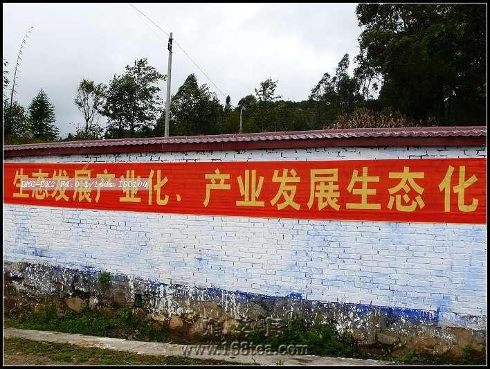 西行访茶记----凤庆县访茶。