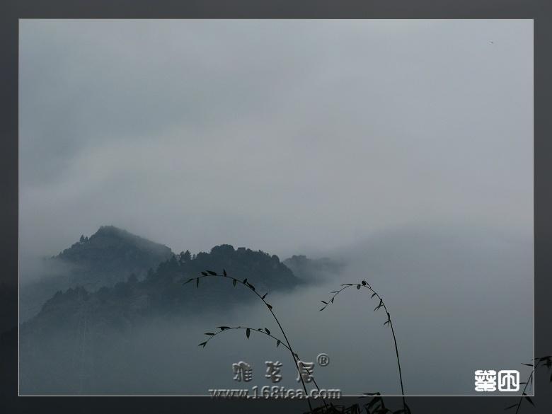 云雾旗盘山