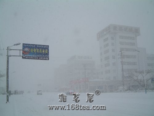 [原创]好大一场雪,雪落飞花