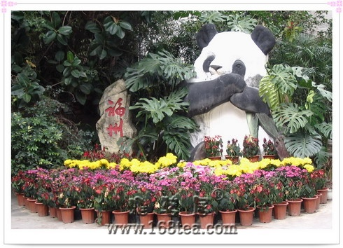福州熊猫世界