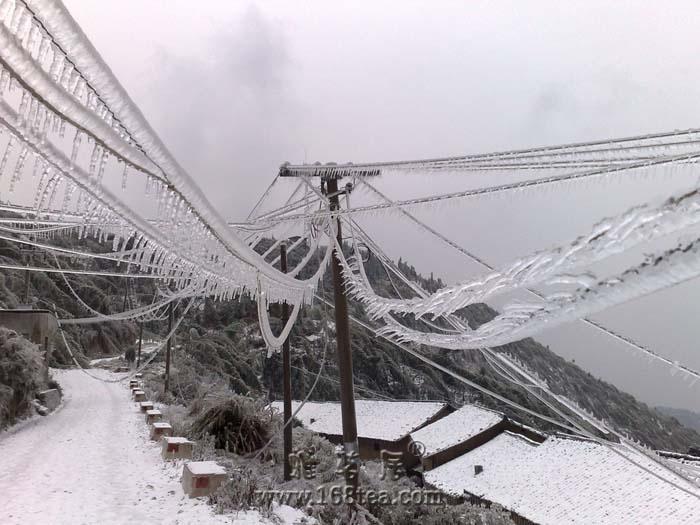 [分享]电线上的冰柱子