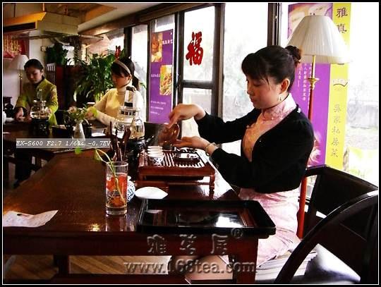福建省第十二届茶艺师培训