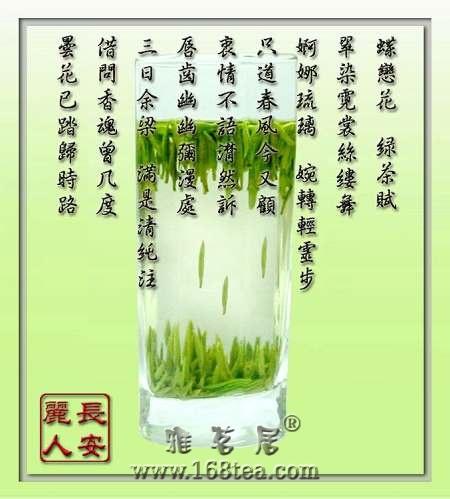 蝶恋花 绿茶赋