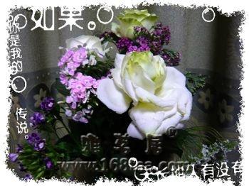[原创]你送我的花我能接受吗