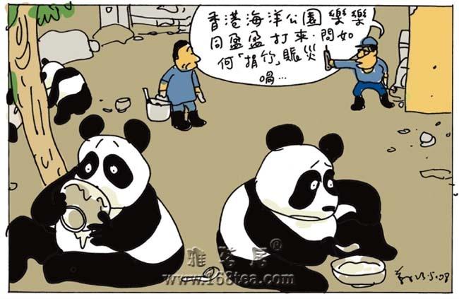 [转帖]四川大熊猫:你们不必担心,我们很圆很强大!