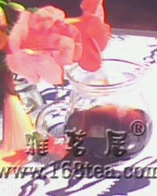 [原创]品普洱茶