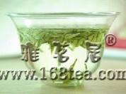 【原】安吉白茶之风采