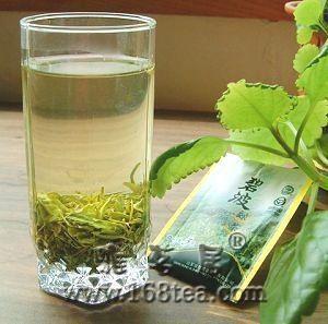 [原创]碧波绿茶,香风漫卷夏日情