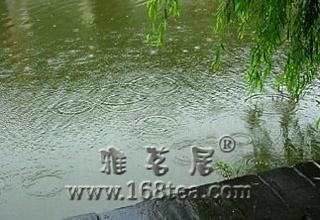 [原创] 秋雨