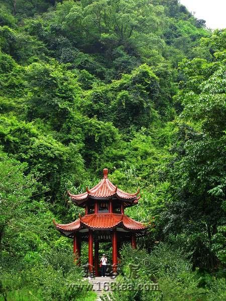 [原创]福州森林公园之——龙潭风景区