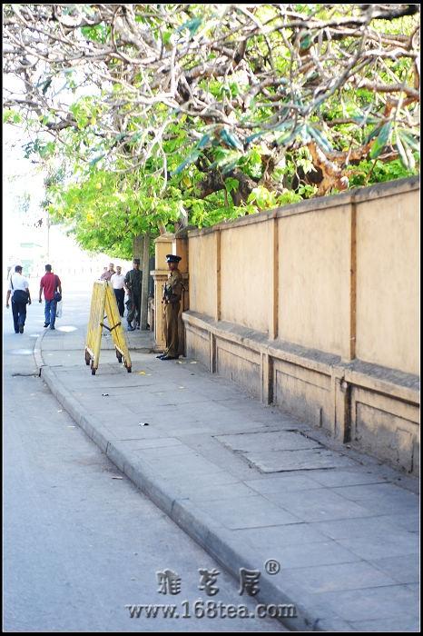 斯里兰卡红茶之旅——战争的阴影