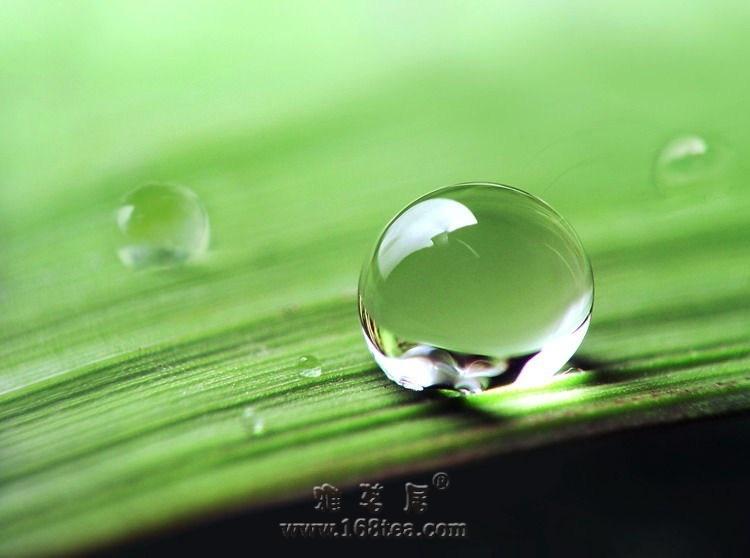 中国古代与水有关的散文(转帖)