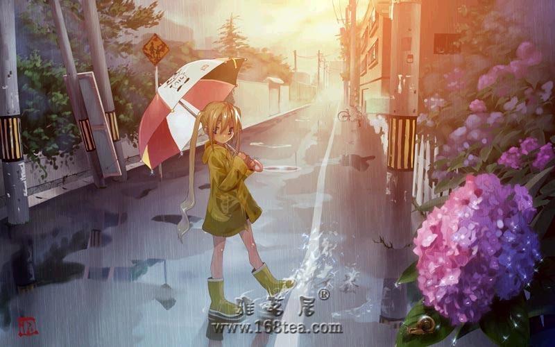 [转] 小雨淋湿了我的心情