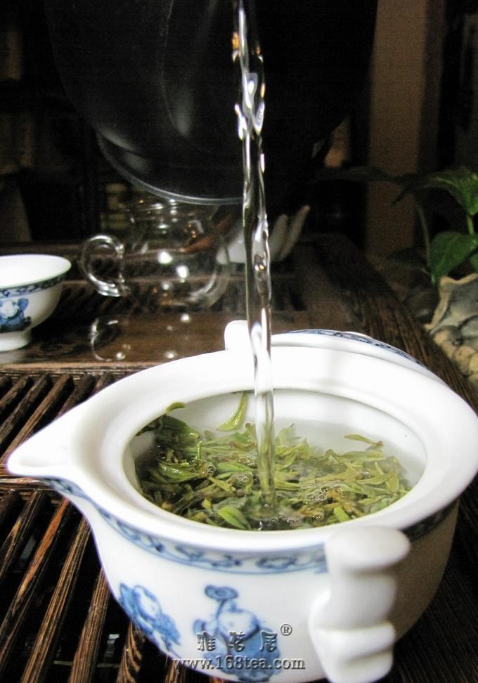 云萱说茶--莫干黄芽