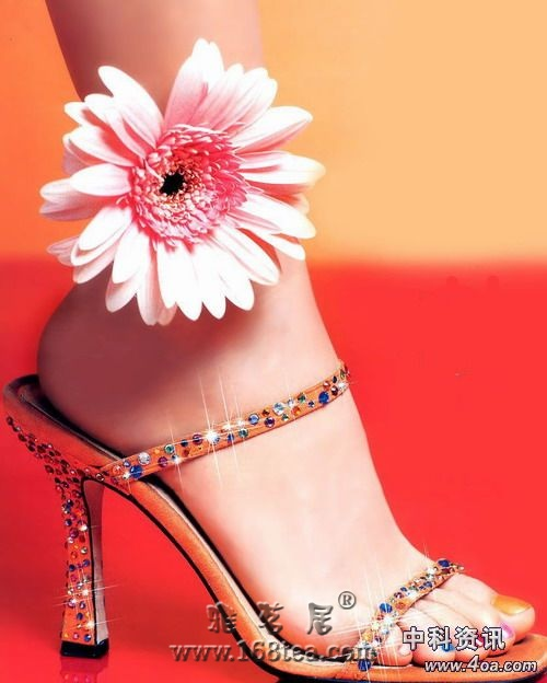 看图――纯金制成的鞋!!