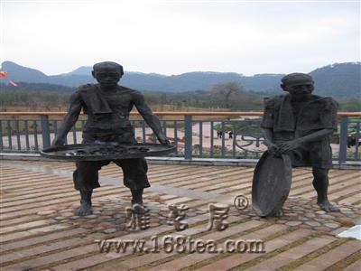 武夷岩茶(大红袍)传统手工制作技艺