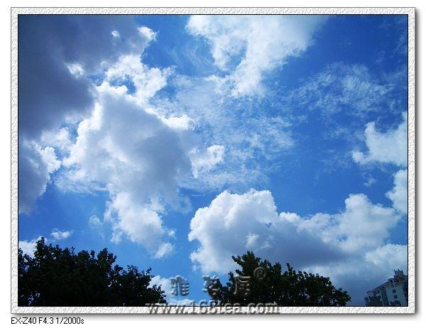 生命难舍蓝蓝的白云天