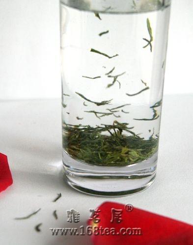 喝喝我的家乡茶——信阳毛尖