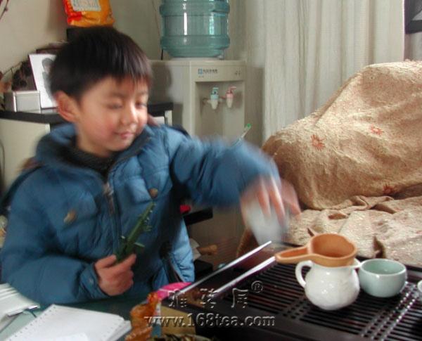 小小茶僮学泡茶