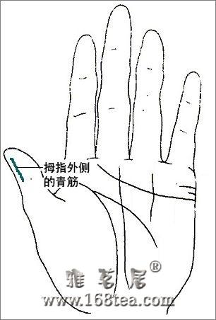 全息手诊图:从手掌上的青筋看健康(马悦凌)