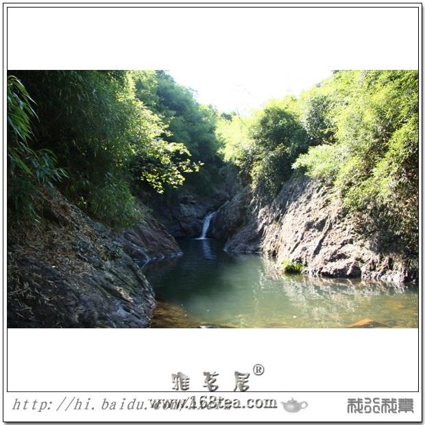 丛林风光(福州永泰万虾溪葫芦潭)
