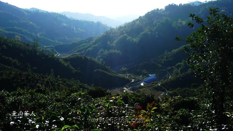 (2010)茶家寨图片2