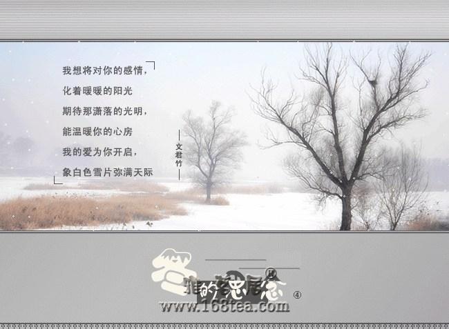 (分享图文)冬季的思念