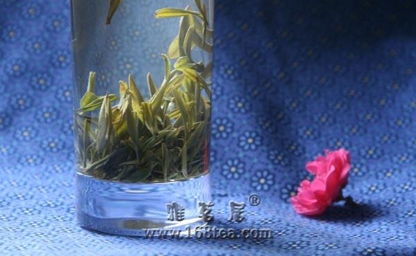 盼春归——【大凉山野茶】