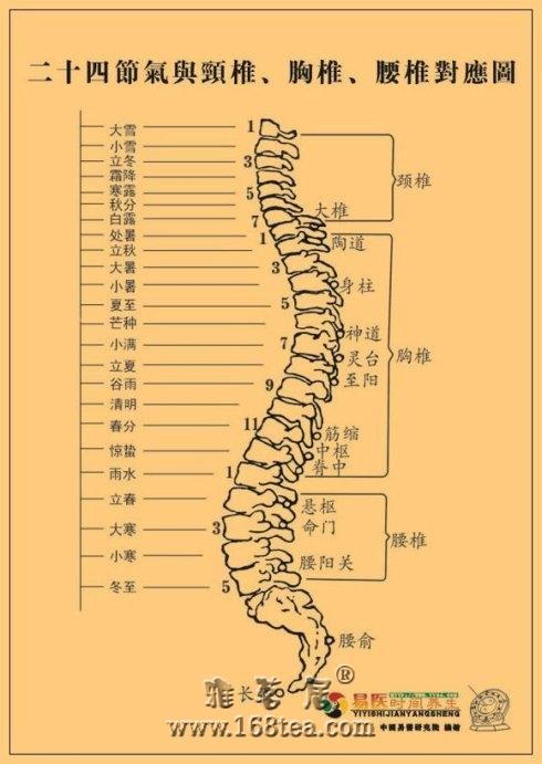 2011年二十四节气交接时间及对应的脊椎(穴位)表