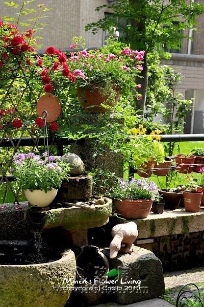 和你分享超美的居家庭院园林图片