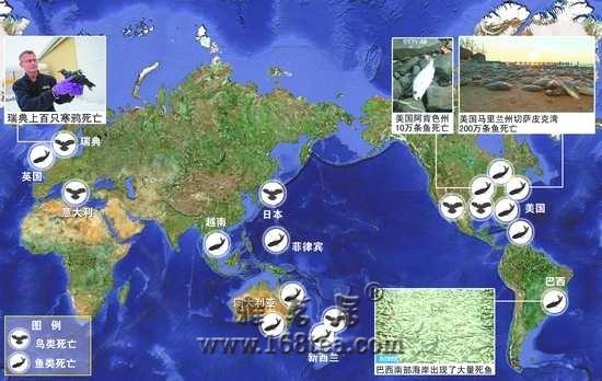 3月8日加州死鱼与3月11日日本地震有关系吗