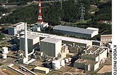 日本核赌――致命的危险游戏