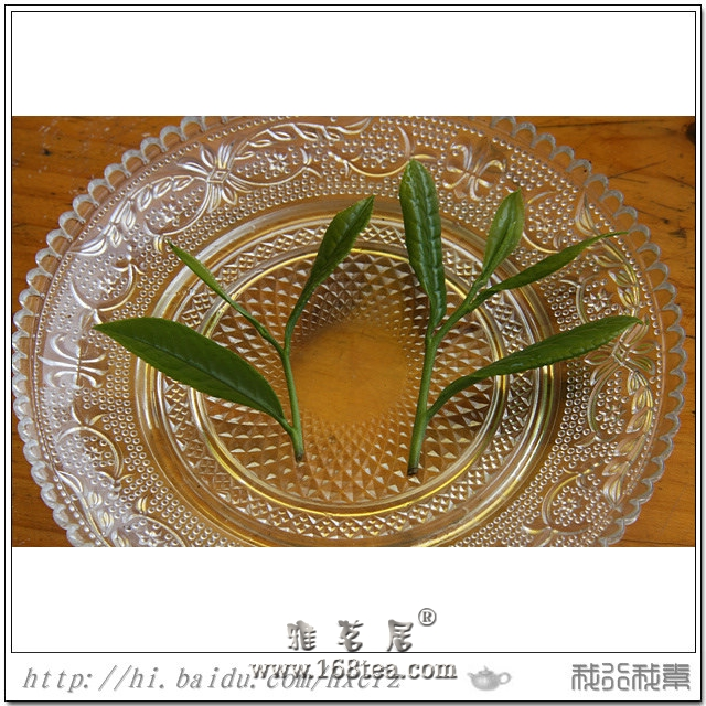 华藏系列茶之-华藏春芽