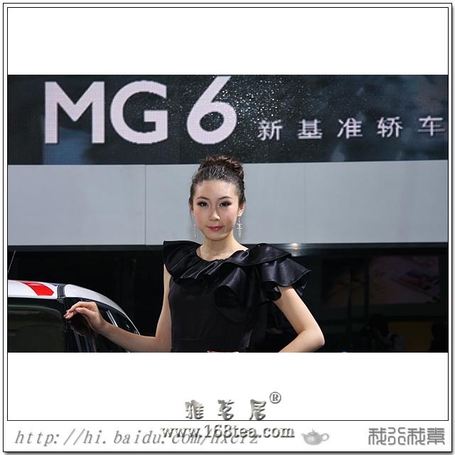 靓丽车模  (2011年十七届福州国际汽车展览会)