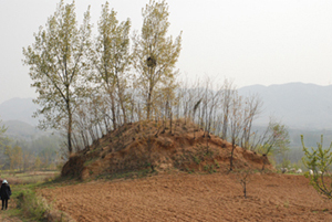 楚长城:失落在荒野的历史尘埃