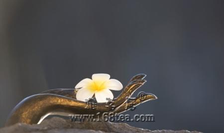 佛是茶的升华 茶是佛的禅心