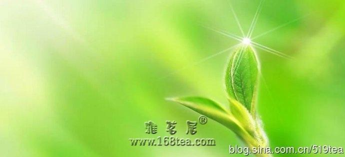 茶叶加工:黄茶制造工艺及理化变化
