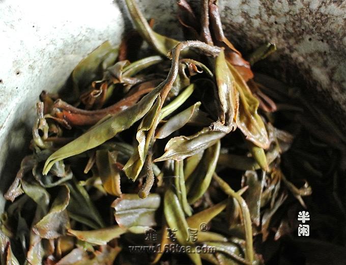 試品2012年3月20日春分節令茶