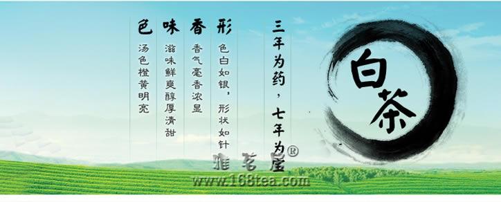白茶:白毫银针制造工艺