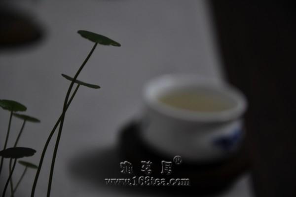 夜客訪茶之茶苦心香
