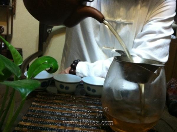 白皮古树茶
