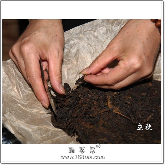 2013年雅茗居立秋煎茶