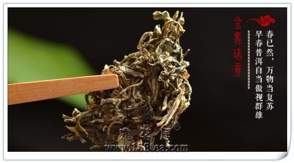 2014年春茶 生肖饼马 章家三队七子饼茶 预售