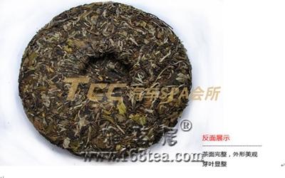 老白茶--茶中珍品